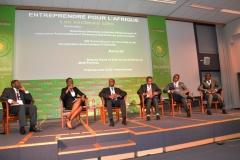 RAF2015-Entreprendre pour l'Afrique les secteurs clés (2)