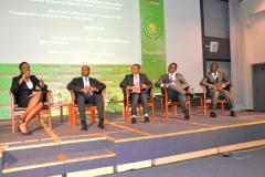 RAF2015-Entreprendre pour l'Afrique les secteurs clés