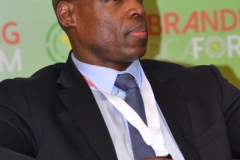 RAF2015-Jean-Luc Olivier Akoto, Deputy Head of Sub-Saharan Africa at BNP Paribas (4)